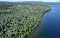 161 Acre Lakefront Property - Tchesinkut Lake