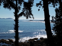 Custom-Built Beach House in Salmon Beach near Ucluelet, with 60' Waterfront