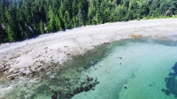Hornby Island Private Oceanfront Acreage