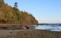 27+ Acres of Forested Oceanfront